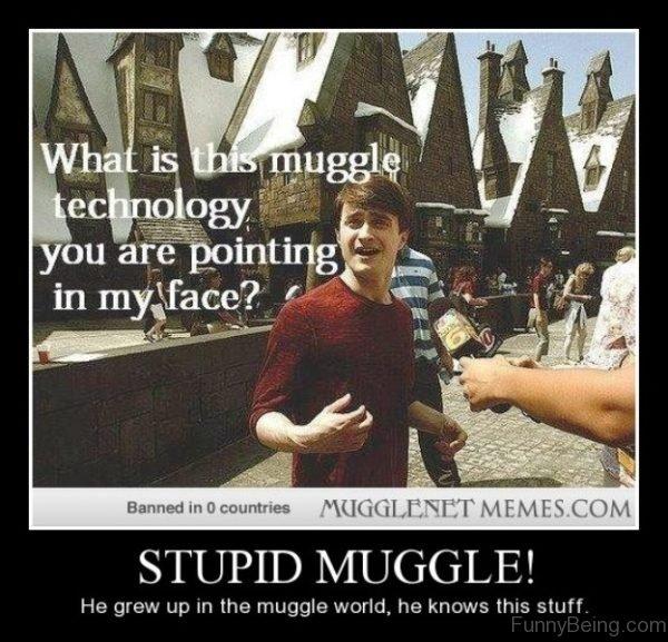 Stupid Muggle