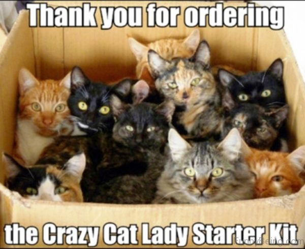 Thank You For Ordering