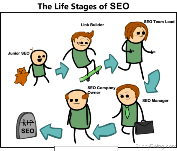 The Life Stages Of SEO