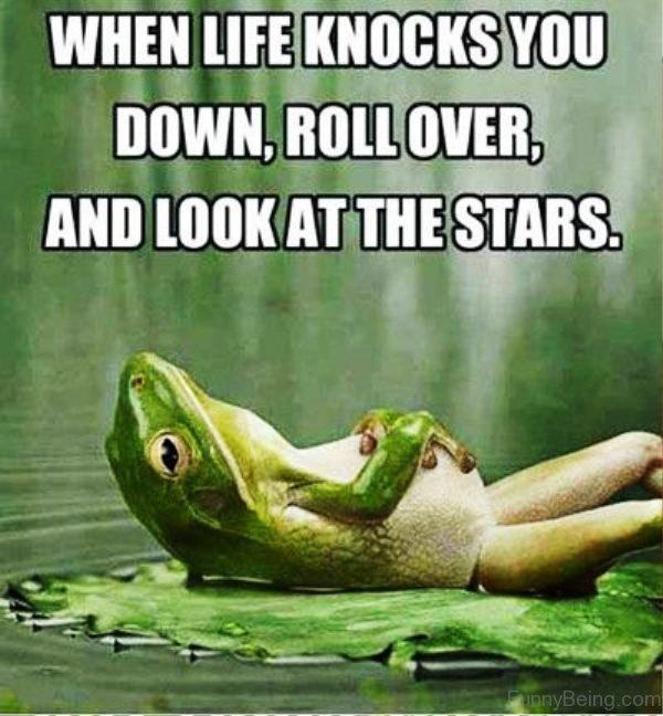 When Life Knocks You