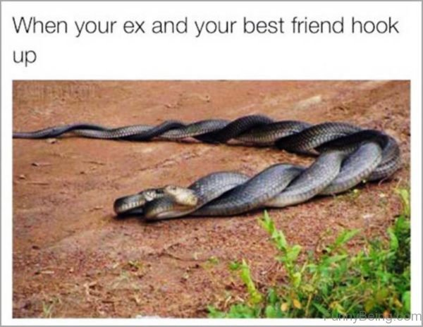 When Your Ex And Your Best Friend Hook Up