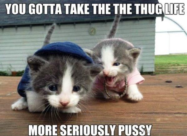 You Gotta Take The Thug Life