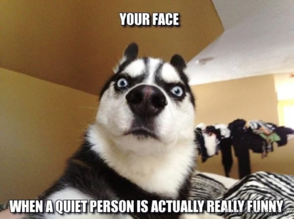 Your Face When A Quiet Person Is