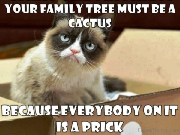 Your Family Tree Must Be A Cactus