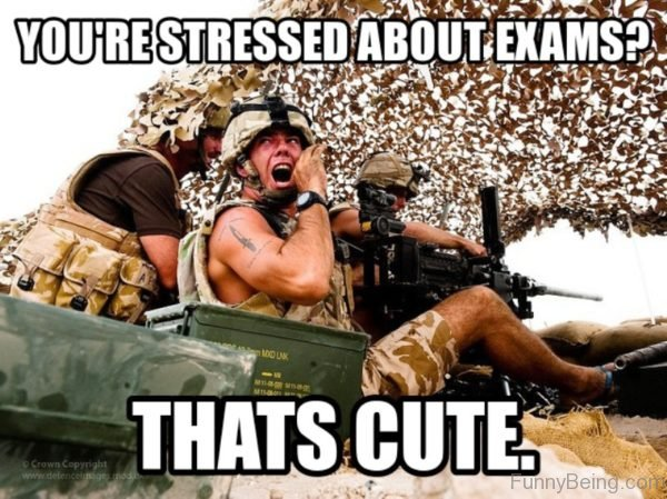 Youre SYou're Stressed About Examstressed About Exams