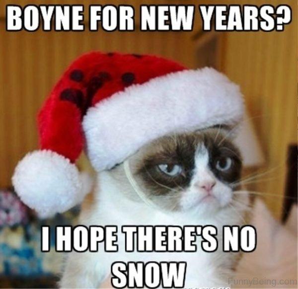 Boyne For New Years