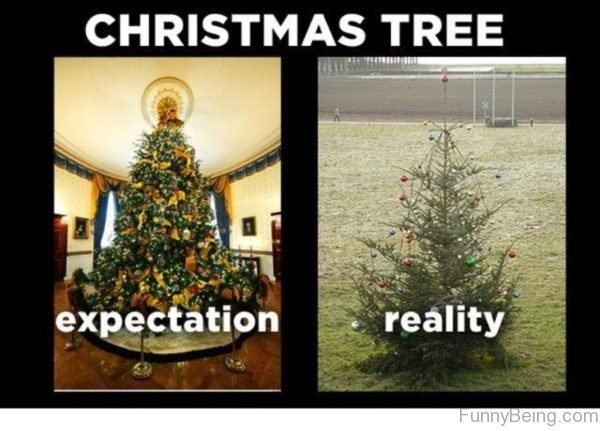 top 90 funny christmas memes - Christmas Decorating Meme
