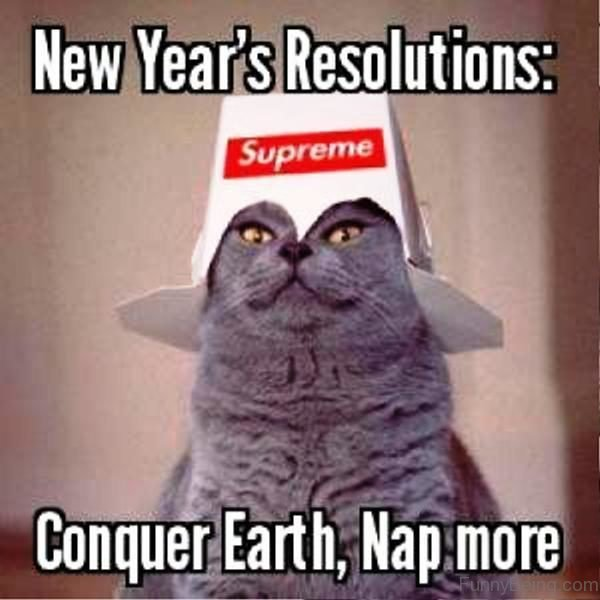 Conquer Earth Nap More