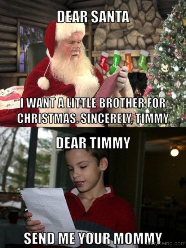 Dear Santa I Want A Little Brother