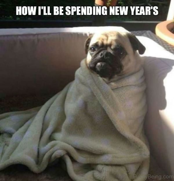 How I'll Be Spending New Years