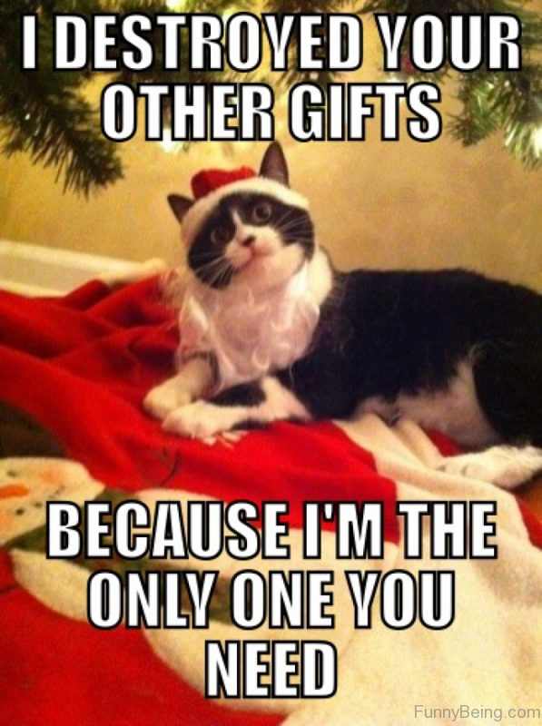 I Destroyed Your Other Gifts