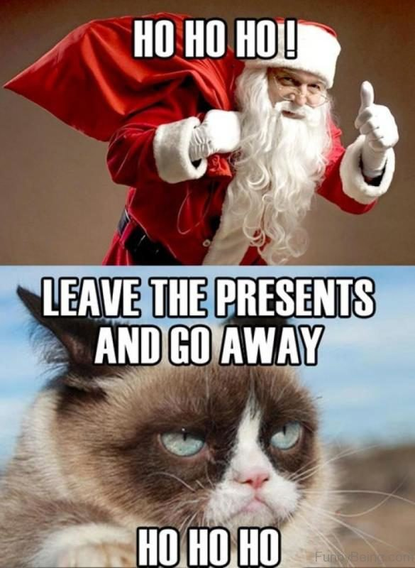 Funniest Christmas Memes.80 Best Funny Christmas Memes