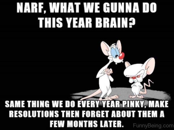 Narf What We Gunna Do This Year Brain