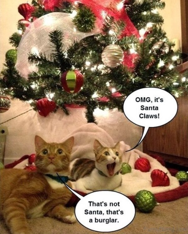 omg its santa claws - Merry Christmas Meme Generator
