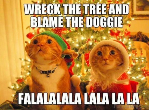 Wreck The Tree