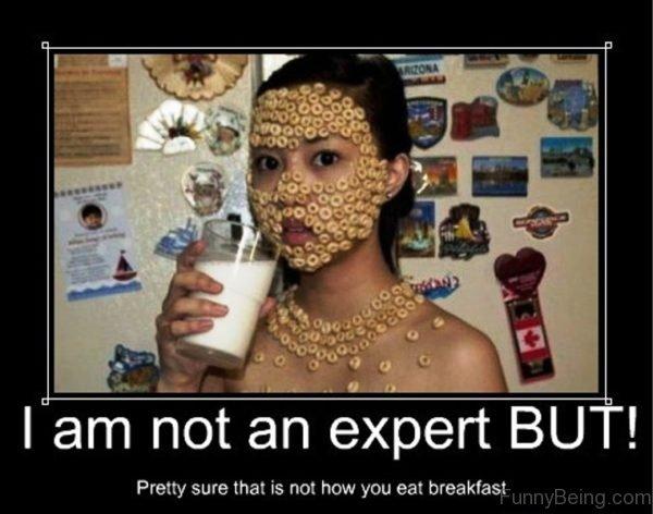 I Am Not An Expert But