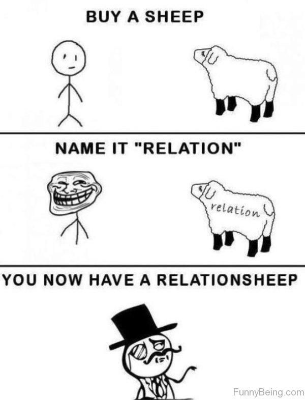 Buy A Sheep