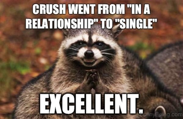 Crush Went From In A Relationship To Single