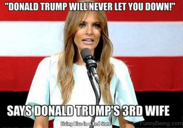 Donald Trump Will Never Let You Down