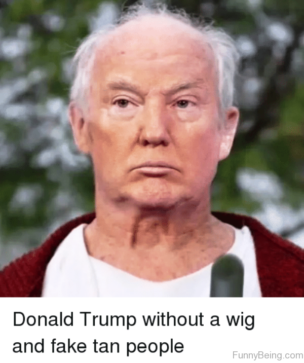 Donald Trump Without A Wig