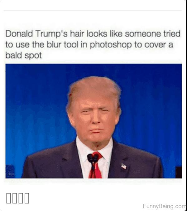 Donald Trumps Hair Looks Like Someone