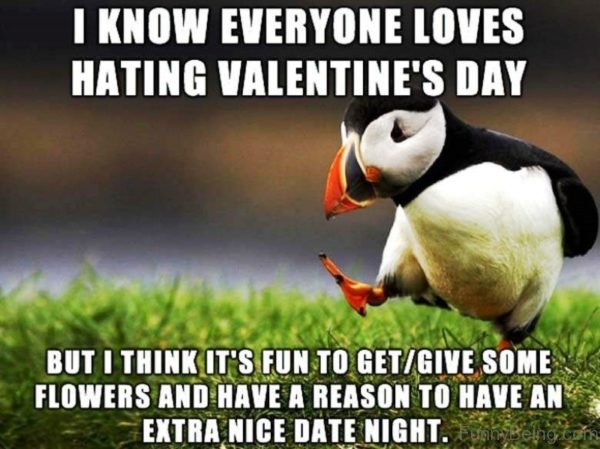 I Know Everyone Loves Hating Valentines Day
