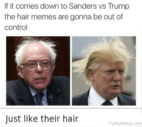 If It Comes Down To Sanders Vs Trump