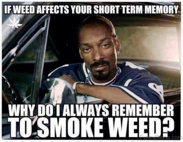 If Weed Affects Your Short Term Memory