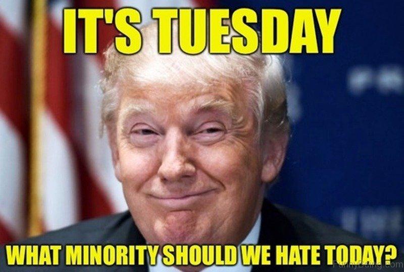 80 Simply Funny Donald Trump Memes
