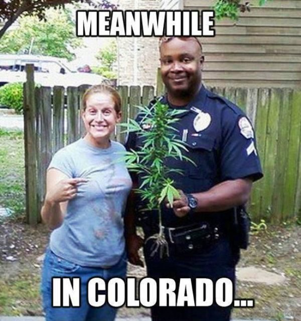 Meanwhile In Colorado