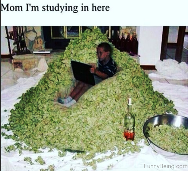 Mom Im Studying In Here