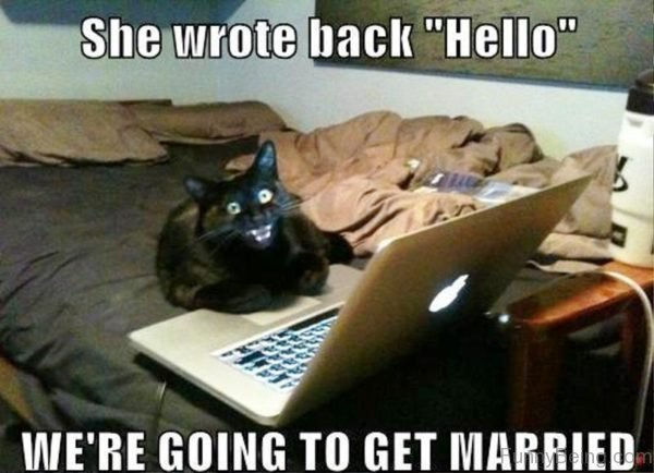 She Wrote Back Hello