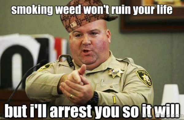 Smoking Weed Wont Ruin Your Life