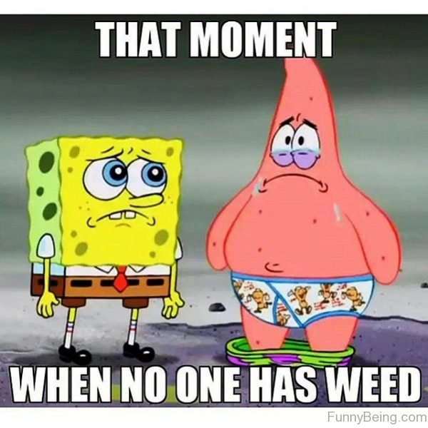 That Moment When No One Has Weed