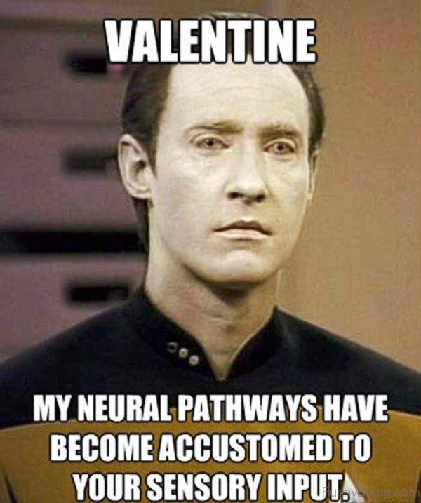 Valentine My Neural Pathways