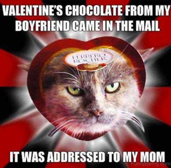 Valentines Chocolate From My Boyfriend