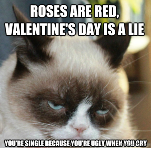Valentines Day Is A Lie
