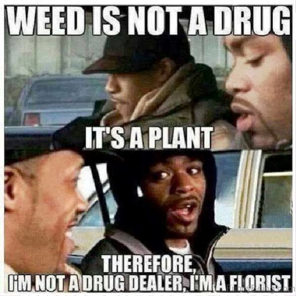 Weed Is Not A Drug