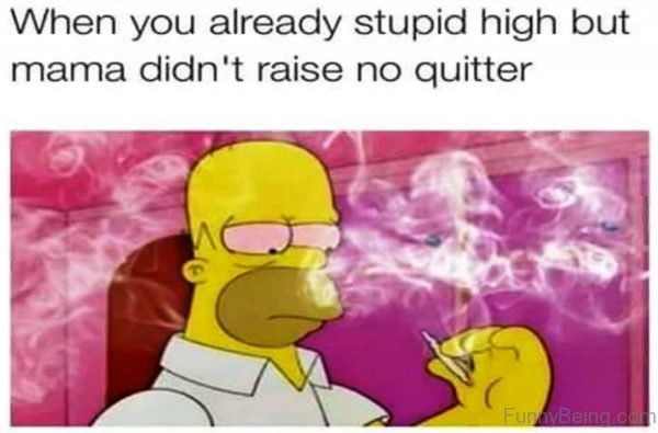 When You Already Stupid High