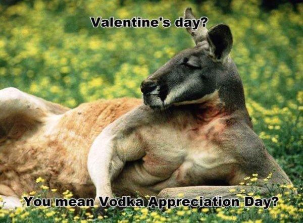 You Mean Vodka Appreciation Day
