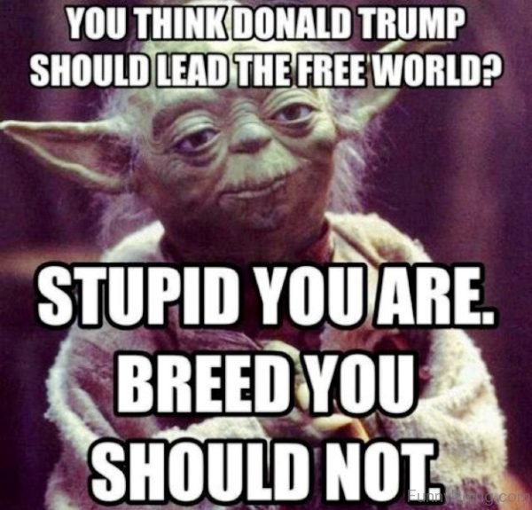 Image result for stupid trump memes