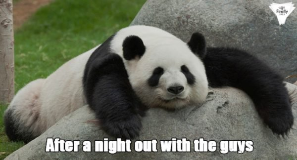 After A Night Out With The Guys