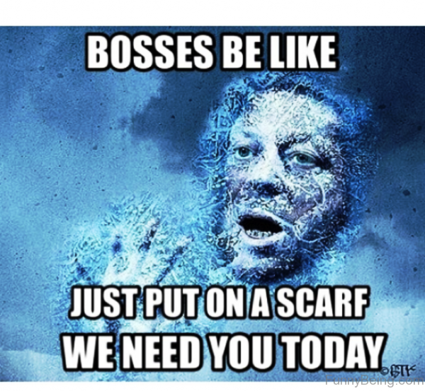 Bosses Be Like Just Put On A Scarf