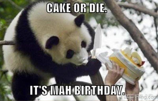 Cake Or Die Its Mah Birthday