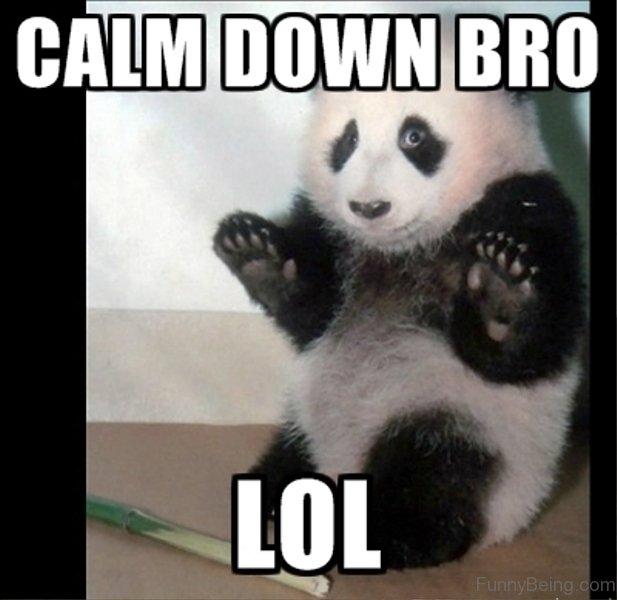 desiigner panda quotes