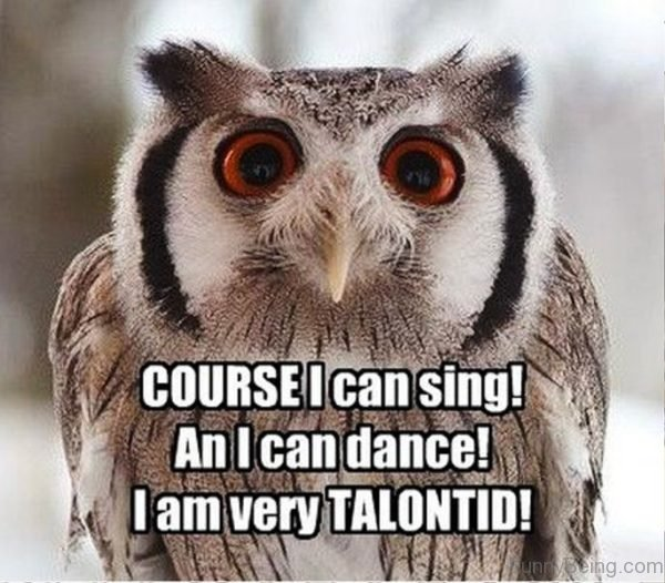 Course I Can Sing