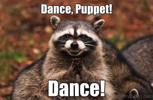 Dance Puppet Dance
