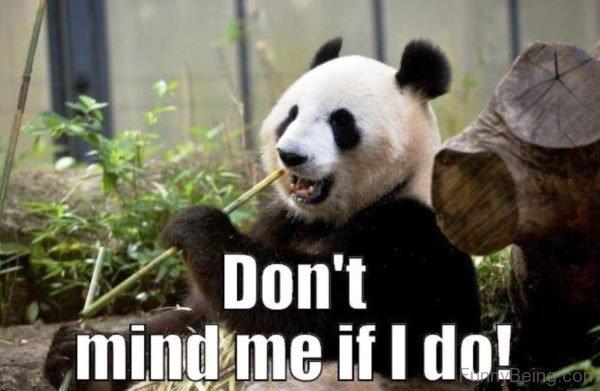 Dont Mnd Me If I Do