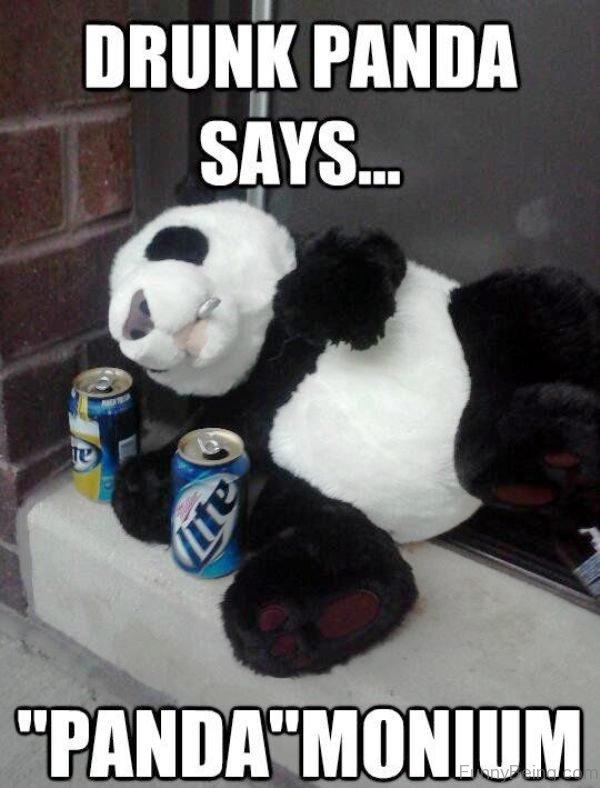Drunk Panda Says