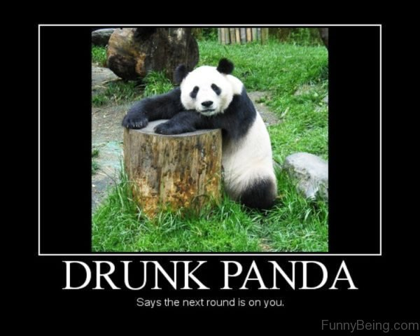 Drunk Panda Says The Next Round